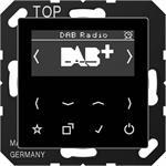 Jung Smart DAB+ Digitalradio DAB A SW