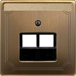 Merten Zentralplatte Anti/mess 292643