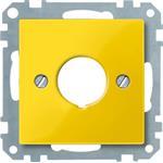 Merten Zentralplatte ge 393803