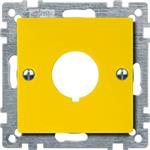 Merten Zentralplatte ge 393903