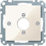 Merten Zentralplatte ws/gl 469044