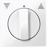 Merten Zentralplatte pws/gl 567119
