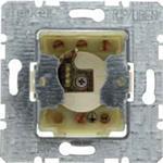 Berker Schlüsselschalter 1-pol. 383110