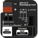 Busch-Jaeger Binäreingang 2-fach 6241/2.0 U