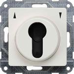 Siemens Jalousie-Schlüsselschalter 5TA7665