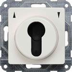 Siemens Jalousie-Schlüsselschalter 5TA7676