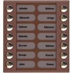 TCS Tür Control Audioaußenstation 2-reihig PET14-EB/04