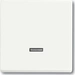 Busch-Jaeger Bedienelement,Busch-Memory 6543-884-101