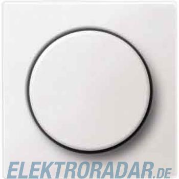 Merten Zentralplatte pws MEG5250-0419