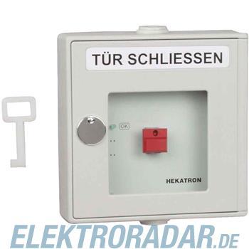 Hekatron Vertriebs Handauslösung DKT 01 gr