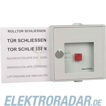 Hekatron Vertriebs Handauslösung grau DKT 02 gr
