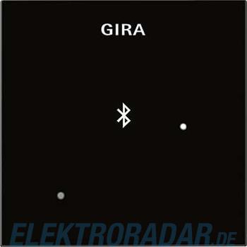 Gira Dockingstation Blindabd. 228805