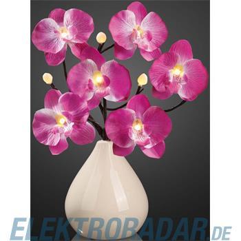 Hellum Glühlampenwer LED Orchideenzweig 300215