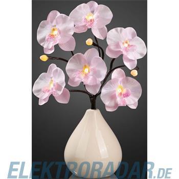 Hellum Glühlampenwer LED Orchideenzweig 300222