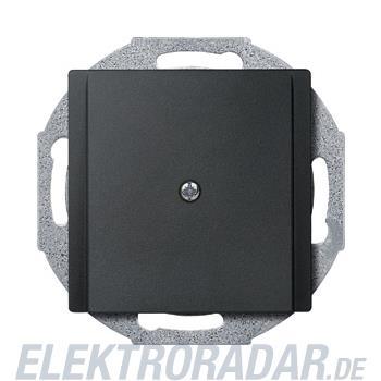 Merten Zentralplatte anth 295614
