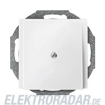 Merten Zentralplatte pws 295619
