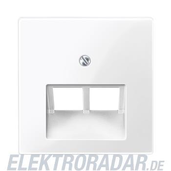 Merten Zentralplatte pws/gl 296119