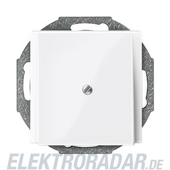 Merten Zentralplatte pws/gl 296319
