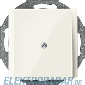 Merten Zentralplatte ws/gl 296344