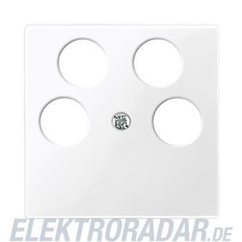 Merten Zentralplatte pws/gl 296519