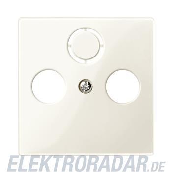Merten Zentralplatte ws/gl 296744