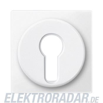 Merten Zentralplatte pws 318119