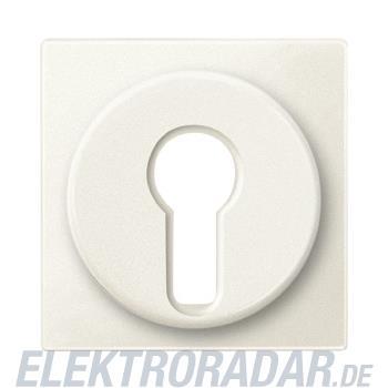 Merten Zentralplatte ws 318144