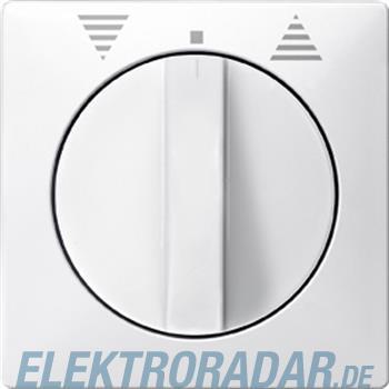 Merten Zentralplatte pws 319299