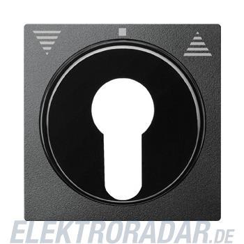 Merten Zentralplatte anth 319314