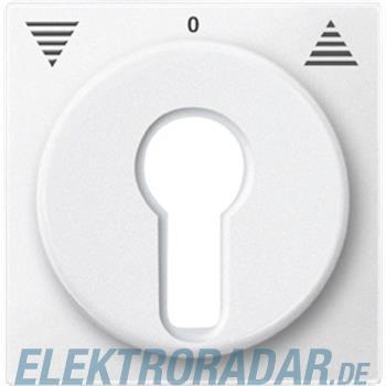 Merten Zentralplatte pws 319319