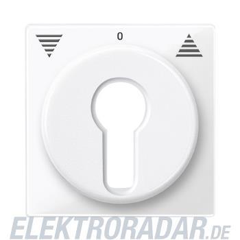 Merten Zentralplatte pws/gl 319419