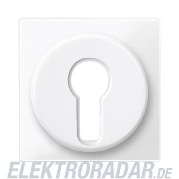 Merten Zentralplatte pws/gl 319519