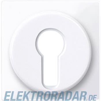 Merten Zentralplatte aws/gl 319525