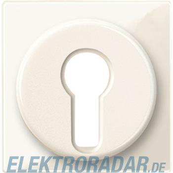 Merten Zentralplatte ws/gl 319544