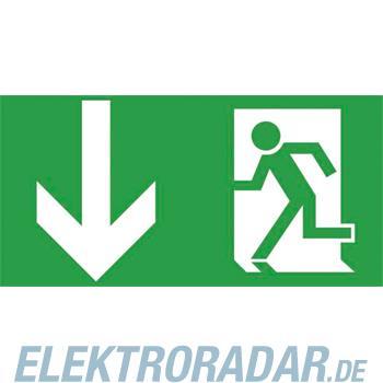 Ceag Notlichtsysteme Piktogrammscheibe 2-seitig 4 0071 350 950