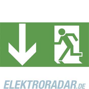 Ceag Notlichtsysteme Piktogrammscheibe 2-seitig 4 0071 350 951
