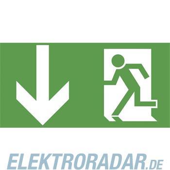 Ceag Notlichtsysteme Piktogrammscheibe 2-seitig 4 0071 353 301
