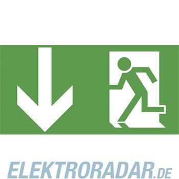 Ceag Notlichtsysteme Piktogrammscheibe 2-seitig 4 0071 353 304