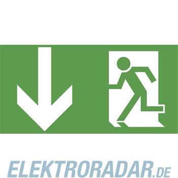 Ceag Notlichtsysteme Piktogrammscheibe 2-seitig 4 0071 353 501