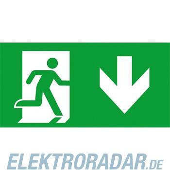 Ceag Notlichtsysteme Piktogramm f. Atlantic S 155-000-013