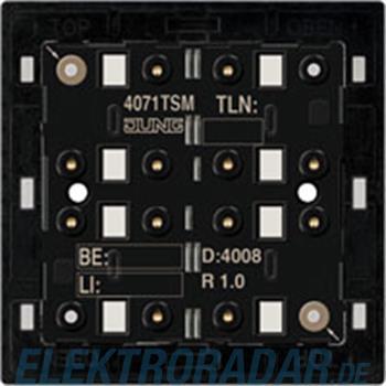 Jung KNX Tastsensor-Modul 4071 TSM