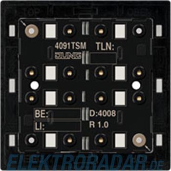 Jung KNX Tastsensor-Modul 4091 TSM