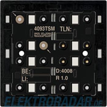 Jung KNX Tastsensor-Modul 4093 TSM