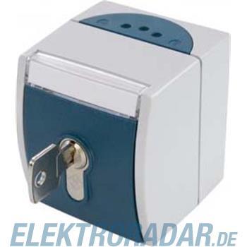 Schabus Schlüsselschalter 300776