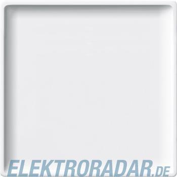 Merten Zentralplatte pws 442519