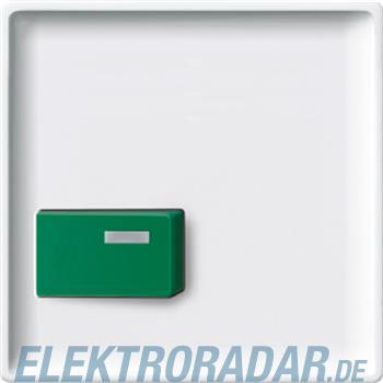 Merten Zentralplatte pws 444019