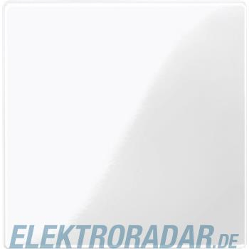 Merten Zentralplatte pws/gl 447319