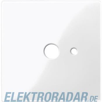 Merten Zentralplatte pws/gl 447419