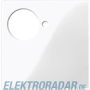 Merten Zentralplatte pws/gl 447519