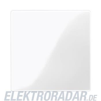 Merten Zentralplatte pws/gl 450019